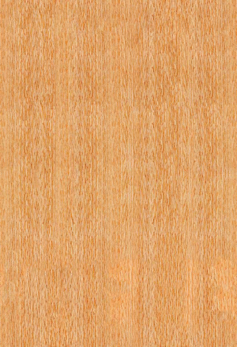 Pinie karamell